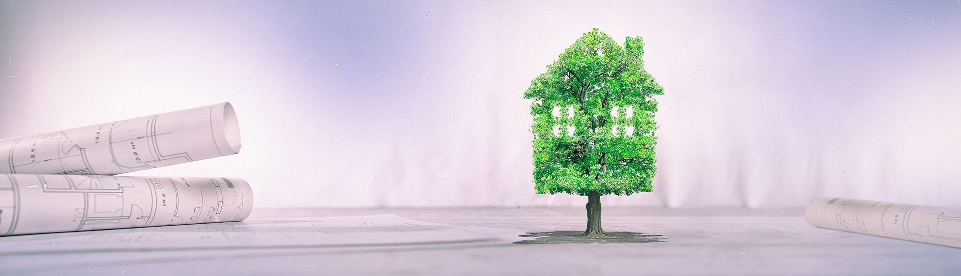 header-tree