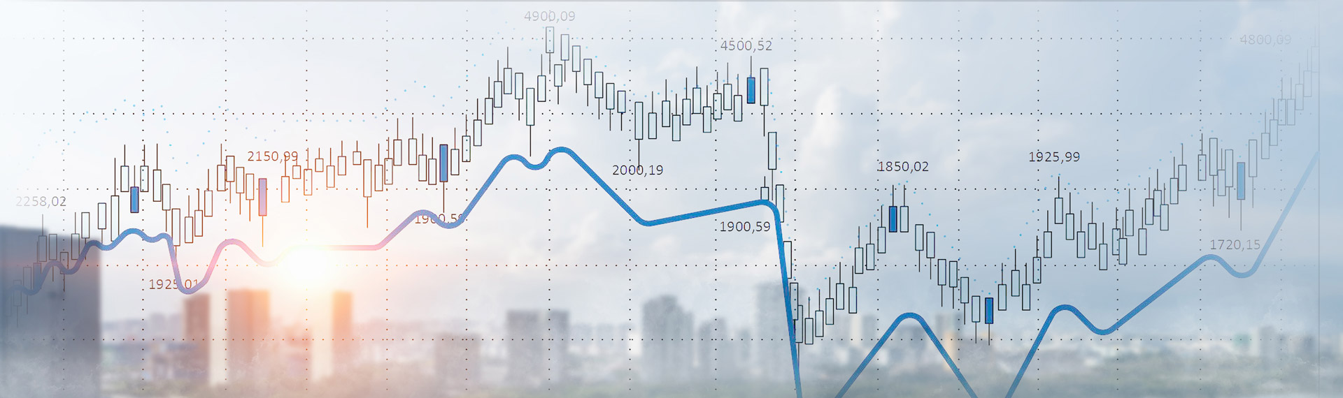 header-evolution-of-share-capital